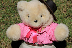 Cowgirl Teddy. Teddybaer cowgirl dressed with bluse, skirt and h close upat Royalty Free Stock Image
