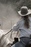 Cowgirl Teri Stock Photography