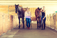 Cowgirl and young woman in stable with horses. Royalty Free Stock Photos
