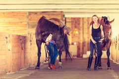 Cowgirl and young woman in stable with horses. Royalty Free Stock Photo