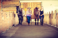 Cowgirl and young woman in stable with horses. Western cowgirl and young women walking with horses in stable paddock. Instagram filter stock image