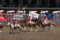 Cowgirls galloping on horseback Stock Image