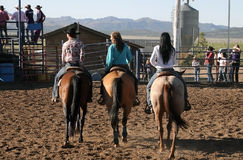 Cowgirls on horses Stock Photos