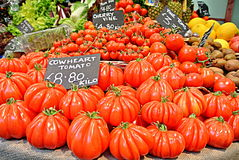 Cowheart tomater Arkivbild