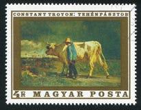 cowherd Imagens de Stock Royalty Free
