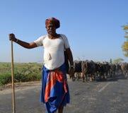 Cowherd que se coloca en el medio del camino Foto de archivo libre de regalías