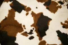 Cowhide dapple Royalty Free Stock Photography