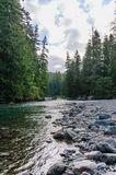 The Cowlitz River. The Colitz River near the La Wis Wis Campground in the state of Washinton Royalty Free Stock Photo