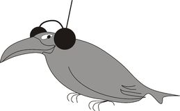 Crow. A crow music lover in the headphones Royalty Free Stock Photography
