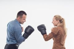 Coworkers in boxing gloves Royalty Free Stock Image