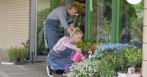 Coworkers i blom- shoppar bevattna växter arkivfilmer