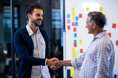 Coworkers shaking hands. In the office Royalty Free Stock Photography