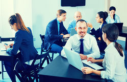 Coworkers working effectively on business project together. Diligent friendly glad coworkers working effectively on business project together Royalty Free Stock Photos