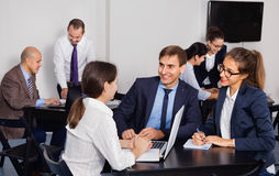 Coworkers working effectively on business project together. Glad cheerful coworkers working effectively on business project together Royalty Free Stock Images