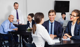 Coworkers working effectively on business project together. Satisfied pleasant coworkers working effectively on business project together Royalty Free Stock Photo
