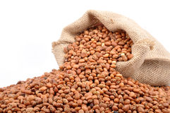 Cowpea Stock Photos
