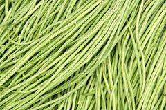 Cowpea pods. The background of fresh cowpea pods Stock Photography