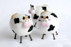 Cows. Three little cows Stock Images