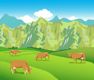 Cows on the Alpine meadows.Mountains range and green valley. Cows On The Alpine Meadows. Mountains Range And Green Valley. Background For Label, Sticker, Print Royalty Free Stock Image