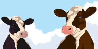 Cows and blue sky. Cows on a background of blue sky Royalty Free Stock Photography