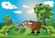 Cows and Bull on Lawn stock illustration