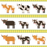 Cows, bulls and calf flat  illustration. Flat. Cows, bulls and calf flat  illustration Royalty Free Stock Photo