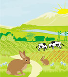 Cows and bunnies in green meadow Stock Photos