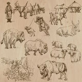 Cows and Cattle - Hand drawn vector pack Royalty Free Stock Photography