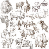 Cows and Cattle - pack of animals. Hand drawings. royalty free illustration