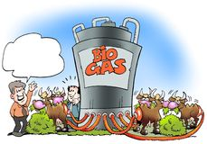 Cows convert biogas to fuel Royalty Free Stock Photos