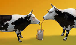 Cows drinking milk Stock Photography