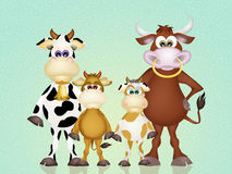 Cows family Stock Photography