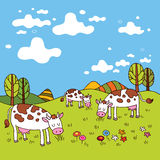 Cows in a field. Group of cows in a field Royalty Free Stock Photo