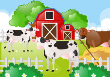 Cows in the field of the farm. Illustration Stock Image