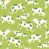 Cows on the field seamless pattern background. Vector cows on the field seamless pattern background with hand drawn elements Royalty Free Stock Photos