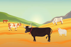 Cows in a filed cartoon illustration. Royalty Free Stock Photos