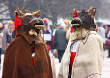 Cows kuker mask. On masquerade festival Kukerlandia 2013 in country of Bulgaria city Yambol Stock Photography