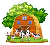 Cows live on the farmyard. Illustration Stock Images