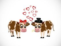 Cows in love Stock Photo