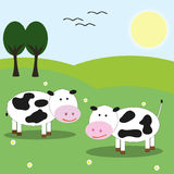 Cows in the meadow. Two cows in a nice landscape with trees Royalty Free Stock Image