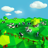 Cows on the meadow. Little cows on the meadow Royalty Free Stock Images