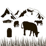 Cows,milk can, house on a mountains background. Cows,milk can, grass and house on a mountains background. Dairy production silhouette. Cattle farm. Alpine Stock Photo