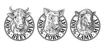 Cows, pig, sheep head. 100 percent beef pork lamb meat lettering Stock Photos