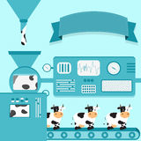 Cows production Royalty Free Stock Images