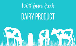 Cows silhouettes and a milk can on blue background. Royalty Free Stock Images