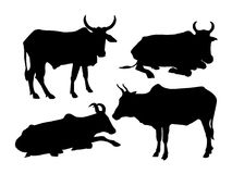 Cows silhouettes-vector Royalty Free Stock Image