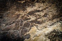 Fragment of petroglyph in Gobustan,. Cows on stone, petroglyph art. Exposition of Petroglyphs in Gobustan near Baku, Azerbaijan royalty free stock photo