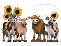 Cows und bull saying something interesting Stock Photos