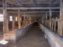 cowshed Стоковые Фото