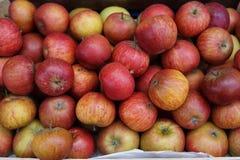 Cox-Äpfel Stockfoto